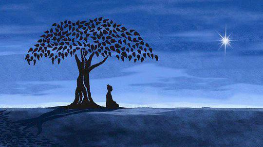 meditation-techniques-bodhi-tree[1].jpg